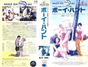 ボーイハント VHSネットレンタル ビデオ博物館 廃盤ビデオ専門店 株式会社Kプラス ビデオ買取 VHS買取