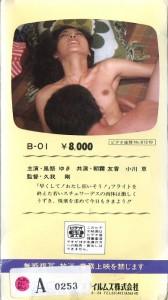 フライトセックス夜に燃え、夜に濡れ VHSネットレンタル ビデオ博物館 廃盤ビデオ専門店 株式会社Kプラス