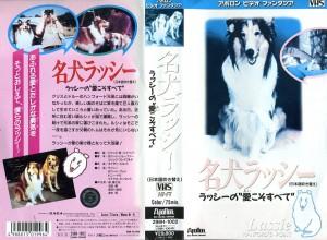 名犬ラッシー ラッシーの愛こそすべて lassie hanford's  point 日本語吹き替え版 VHSネットレンタル ビデオ博物館 廃盤ビデオ専門店 株式会社Kプラス
