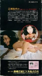江崎和代の 若妻の白い肌 花弁の誘惑 生撮り VHSネットレンタル ビデオ博物館 廃盤ビデオ専門店 株式会社Kプラス