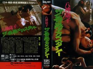 八神康子/ザ・香港エクスタシー VHSネットレンタル ビデオ博物館 廃盤ビデオ専門店 株式会社Kプラス