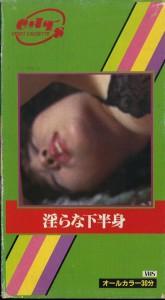 淫らな下半身 VHSネットレンタル ビデオ博物館 廃盤ビデオ専門店 株式会社Kプラス