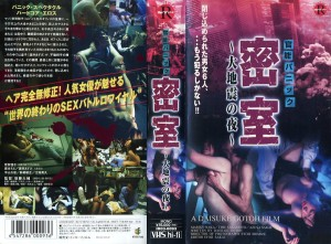 官能パニック 密室 大地震の夜 VHSネットレンタル ビデオ博物館 廃盤ビデオ専門店 株式会社Kプラス
