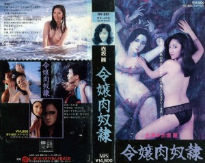 令嬢肉奴隷 VHSネットレンタル ビデオ博物館 廃盤ビデオ専門店 株式会社Kプラス