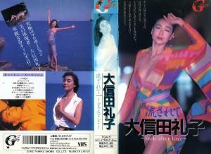 大信田礼子 流されて Seek after love VHSネットレンタル ビデオ博物館 廃盤ビデオ専門店 株式会社Kプラス