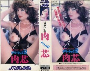 デリーシャス2 肉芯 VHSネットレンタル ビデオ博物館 廃盤ビデオ専門店 株式会社Kプラス