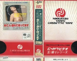 杉佳代子・美野真琴の未亡人 濡れて待ってます  VHSネットレンタル ビデオ博物館 廃盤ビデオ専門店 株式会社Kプラス VHS買取 ビデオテープ買取