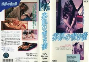 柔肌の青き蕾 乙女のアバンチュール VHSネットレンタル ビデオ博物館 廃盤ビデオ専門店 株式会社Kプラス