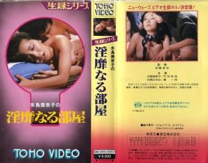 水島美奈子の淫靡なる部屋  VHSネットレンタル ビデオ博物館 廃盤ビデオ専門店 株式会社Kプラス