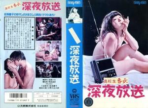 高校生番長 深夜放送 VHSネットレンタル ビデオ博物館 廃盤ビデオ専門店 株式会社Kプラス