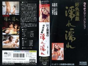 好色演戯 濡れ濡れ VHSネットレンタル ビデオ博物館 廃盤ビデオ専門店 株式会社Kプラス