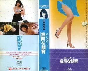 青いスカート 危険な飼育 VHSネットレンタル ビデオ博物館 廃盤ビデオ専門店 株式会社Kプラス