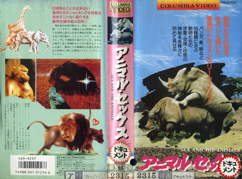 アニマル・セックス/THE ANIMAL SEX  VHSネットレンタル ビデオ博物館 廃盤ビデオ専門店 株式会社Kプラス