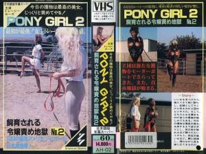 トレーシー・ローズ PONY GIRL2 飼育される令嬢責め地獄NO. VHSネットレンタル ビデオ博物館 廃盤ビデオ専門店 株式会社kプラス VHS買取 ビデオテープ買取